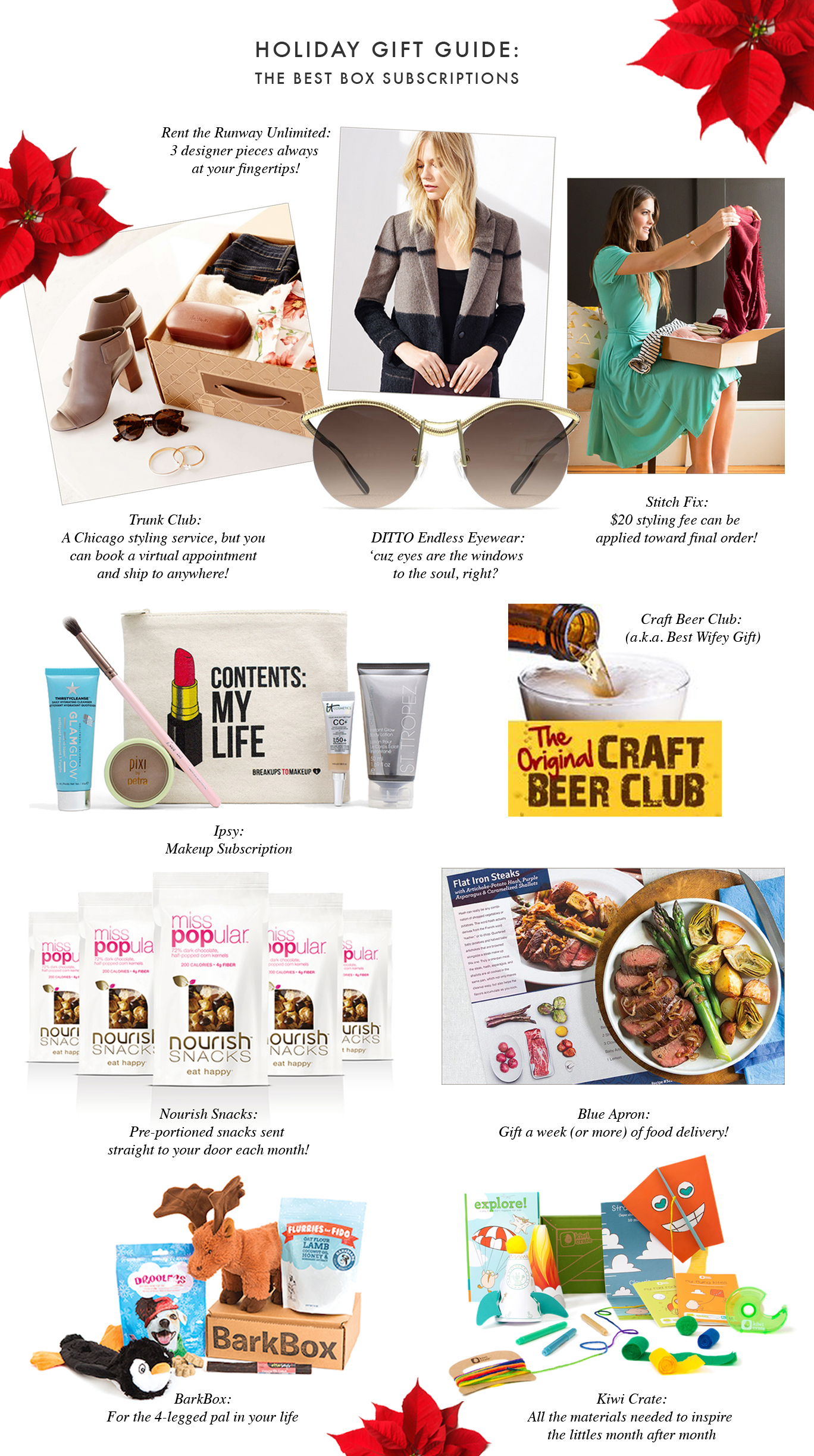 Holiday Gift Guide Box Subscriptions-121615
