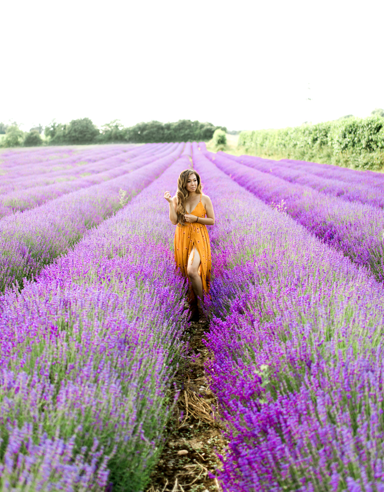 Run Away with Me to Hop Shop Lavender Farm » Melissa Takes